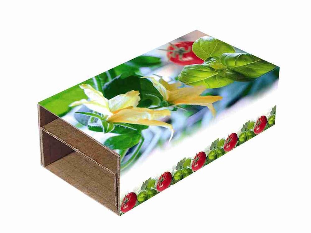 Bild Appetit-Duo, Basilikum und Tomate, 1-4 c Digitaldruck inklusive