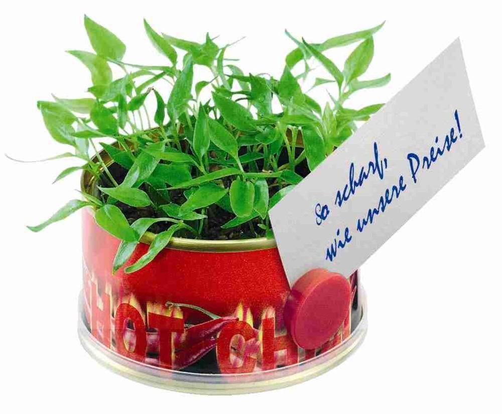 Bild Minigarten Hot mit Magnet, Ø 73 x 38 mm, Chili, 1-4 c Digitaldruck inklusive