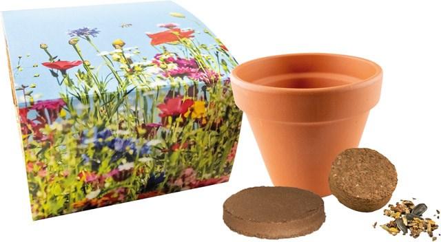 Bild Bienen-Festmahl, Bienenwiesen-Mischung, 1-4 c Digitaldruck inklusive